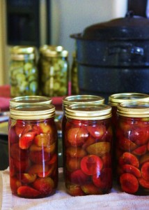 Canned plums and sweet pickles