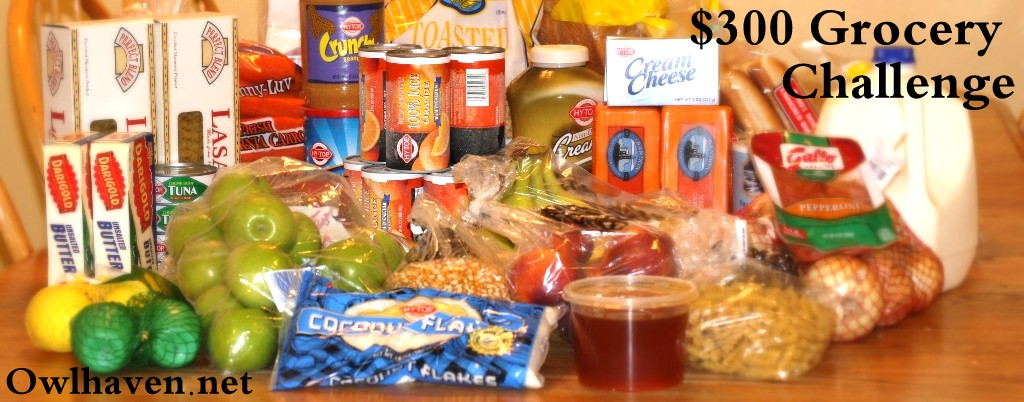 $300 Grocery Challenge